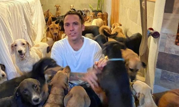 Ricardo resgatou 300 cães