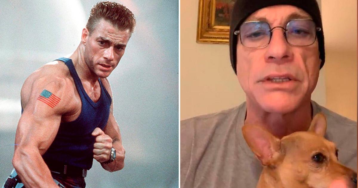 Herói da vida real: Van Damme salva cachorro condenado à morte 1
