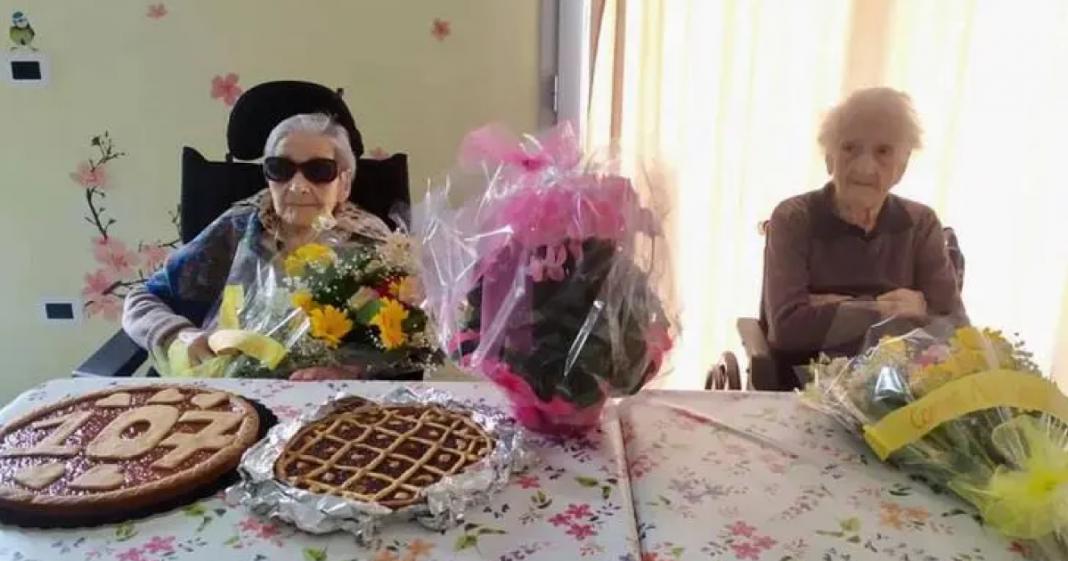 avós comemoram aniversário