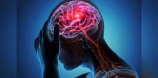 pesquisadores descobrem proteína no cerebro