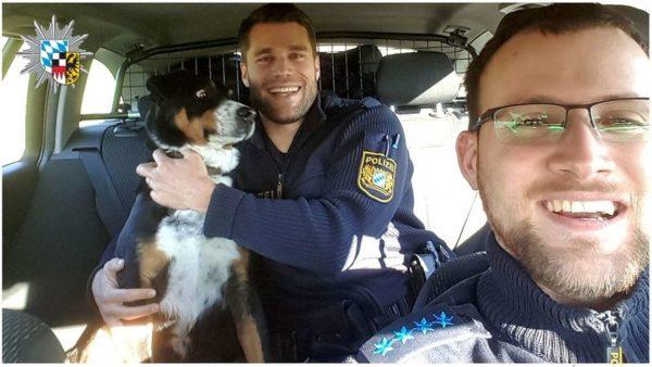 oficiais tiram foto com cãozinho