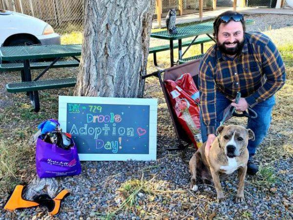 Mulher se muda para abrigo de cães para ajudar a divulgar pit bull que aguardava adoção há quase 2 anos 1
