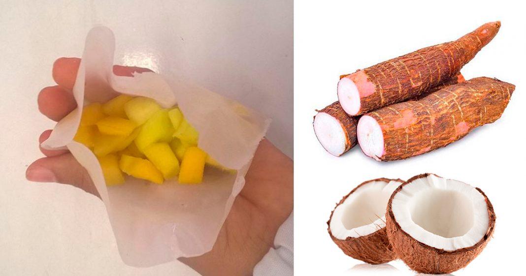 Pesquisadores da Bahia criam embalagem de mandioca e coco que se degrada em menos de 6 meses 3