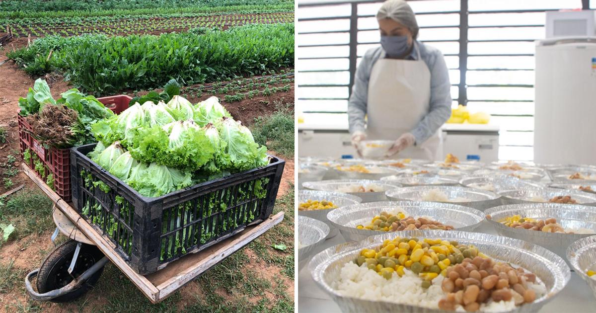 Enel doa 11 toneladas de produtos orgânicos para moradores de Paraisópolis 1