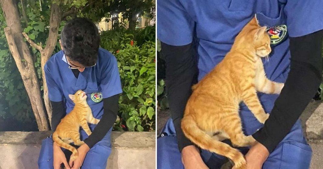 Enfermeiro com gatinha no colo