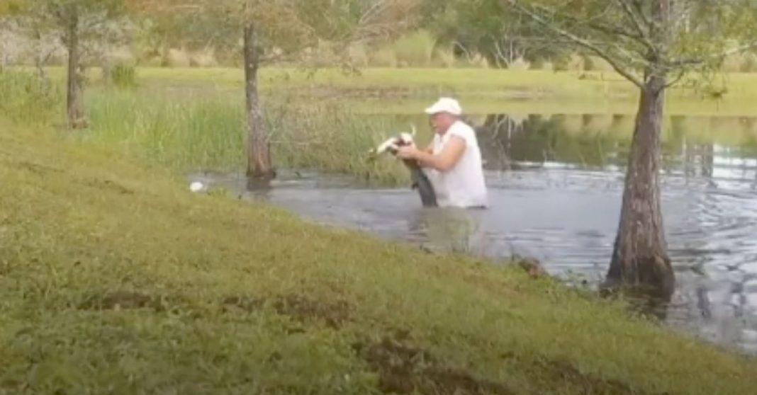 homem salva cachorro de jacare