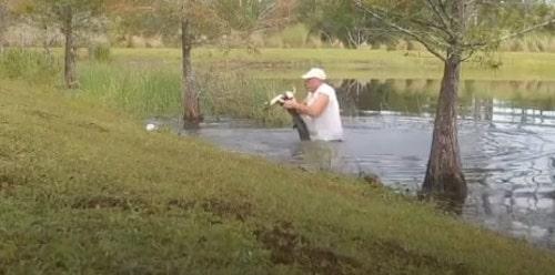 homem salva cachorro de jacare 2