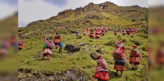 povos indígenas peru reflorestando cordilheira dos andes