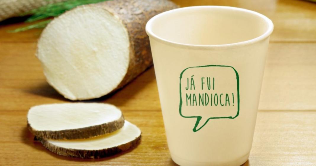 startup produz embalagens a partir da mandioca