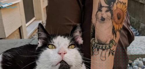 tatuagens eternizar o amor 8