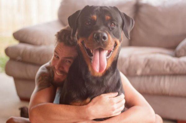 Desafio do Cachorro Sorridente