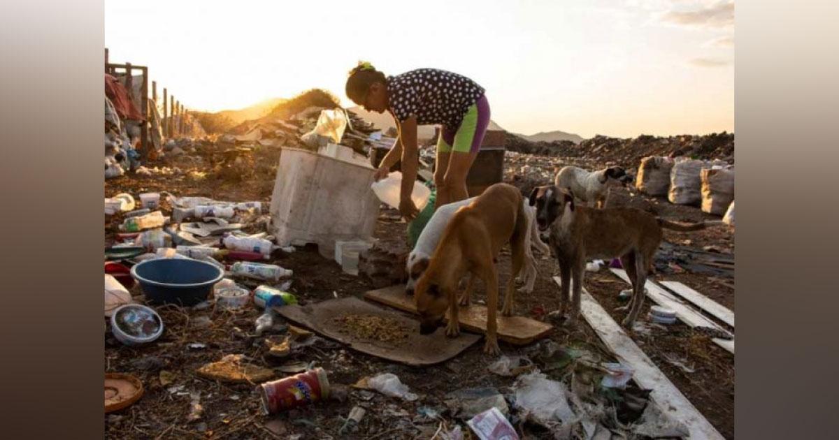 dona margareth alimenta cães em lixão