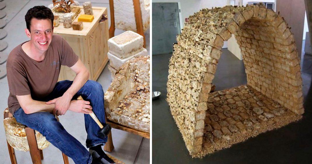 Designer cria tijolos de cogumelos que são mais fortes do que concreto 1