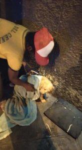 morador de rua enrolando cadela pano