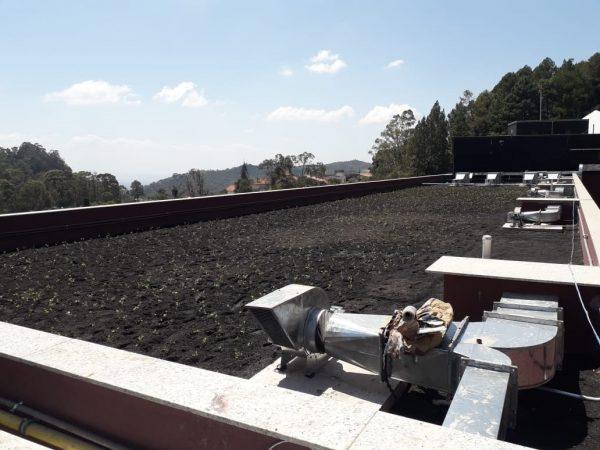hospital em BH tem telhado ecológico