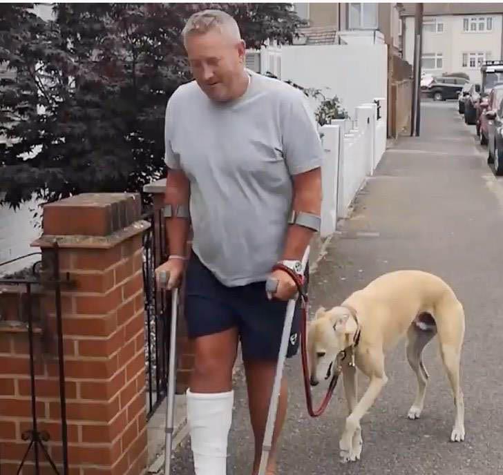 cachorro caminha ao lado dono manco mancando