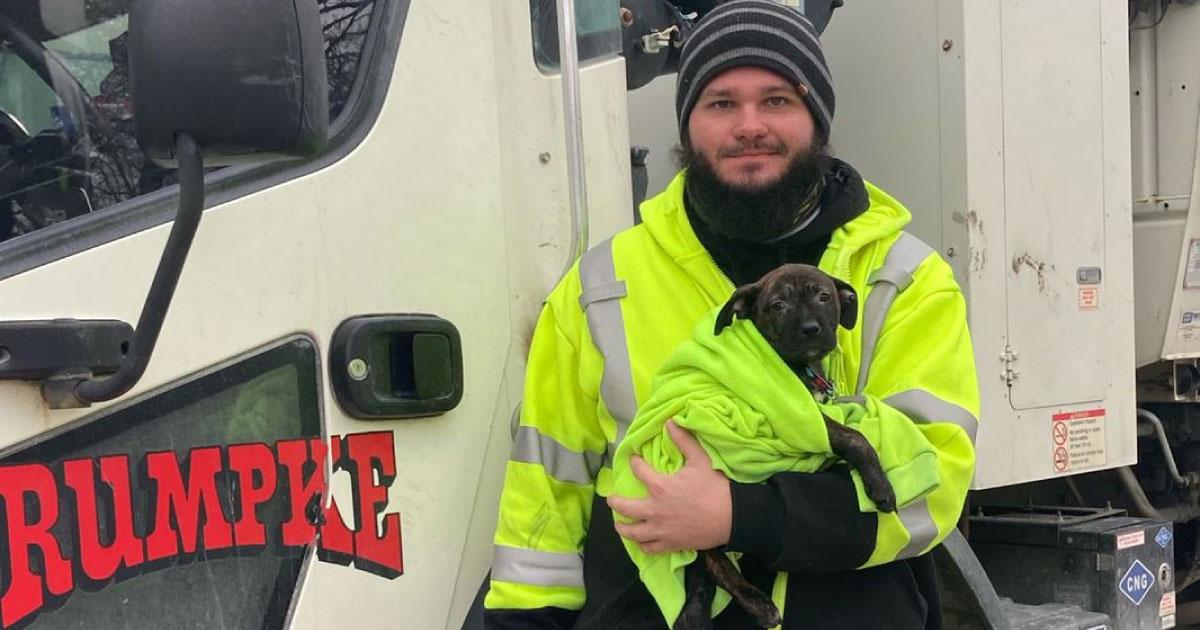 Motorista encontra cão em saco de lixo