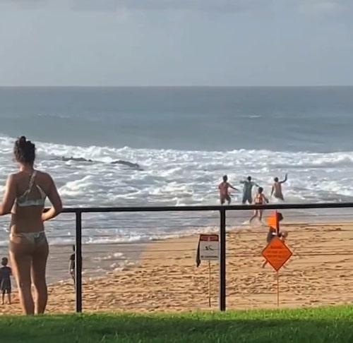 surfista salva menina se afogando 1