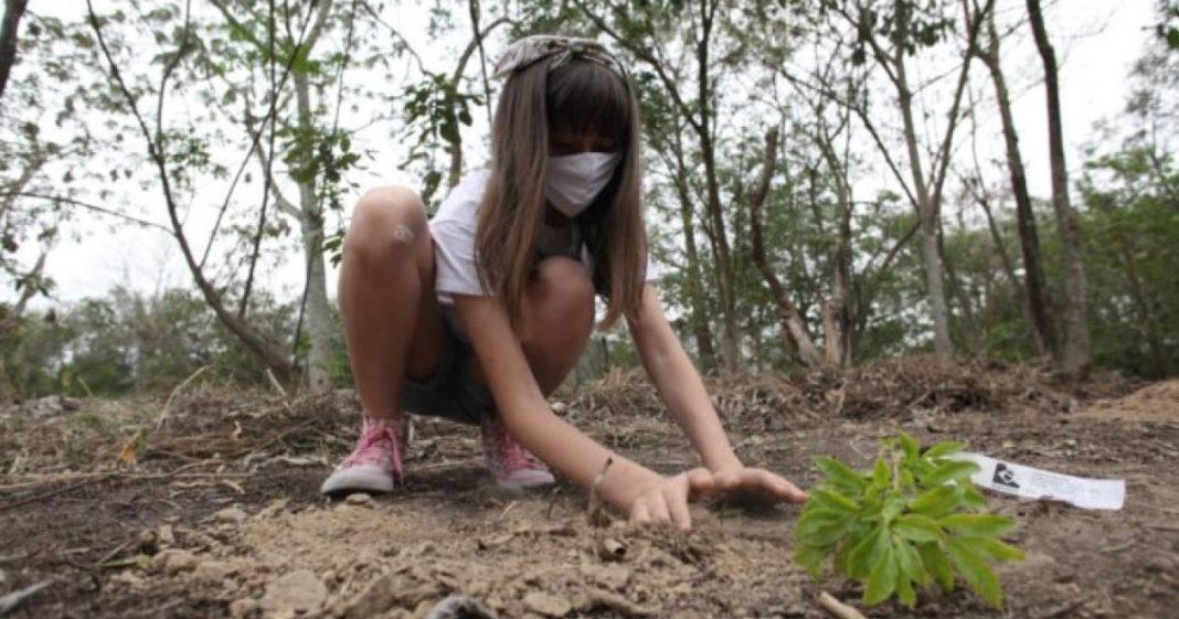 Crianças arrecadam R$ 23 mil com vaquinha virtual para restaurar área de Mata Atlântica 1
