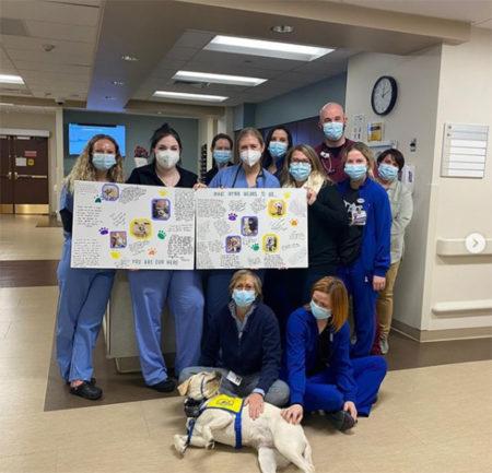 Funcionários de hospital segurando cartazes para cão terapeuta em festinha de despedida
