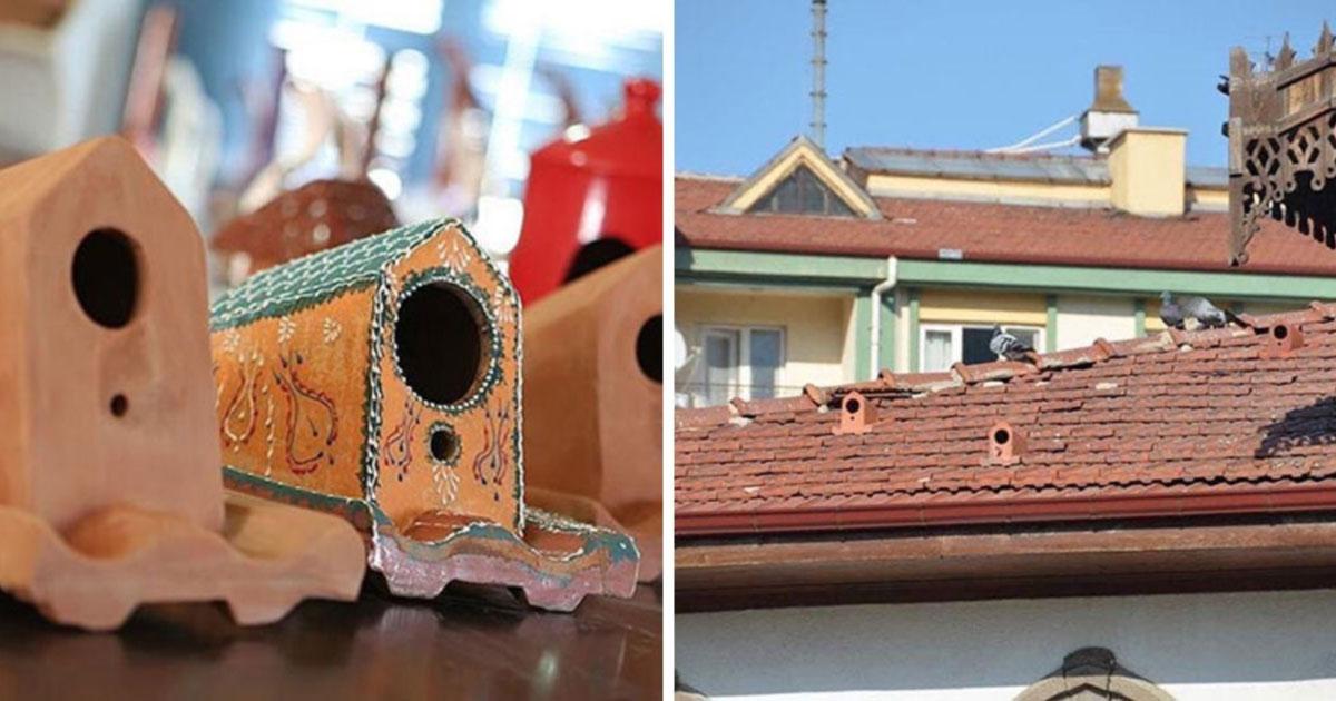 casa de passaro no telhado