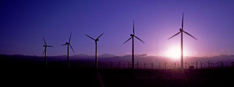 Imagem de postes com hélices de captação de energia eólica