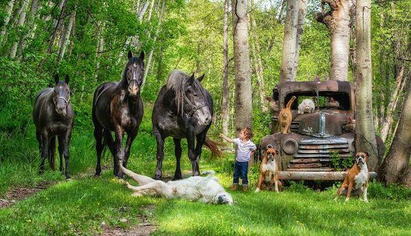 familia e seus animais 1