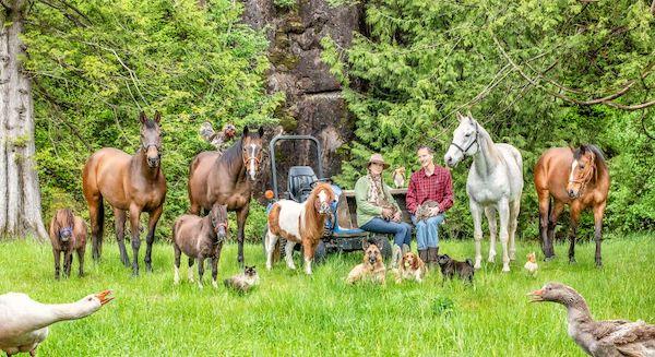 familia e seus animais 12