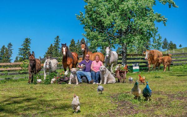 familia e seus animais 22