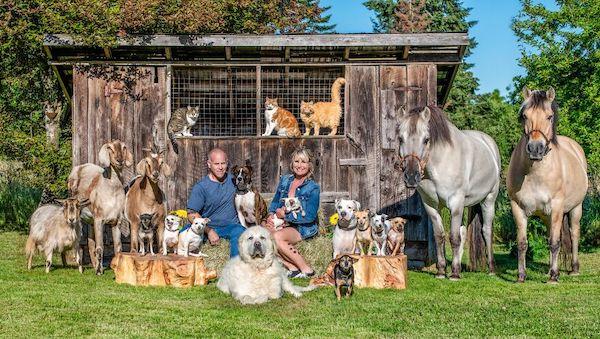 familia e seus animais 3
