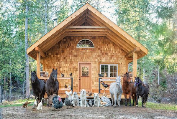 familia e seus animais 6