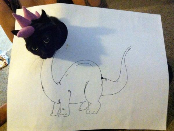 gatos dinossauros 11