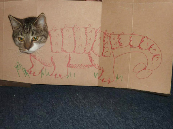 gatos dinossauros 14