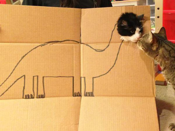 gatos dinossauros 15