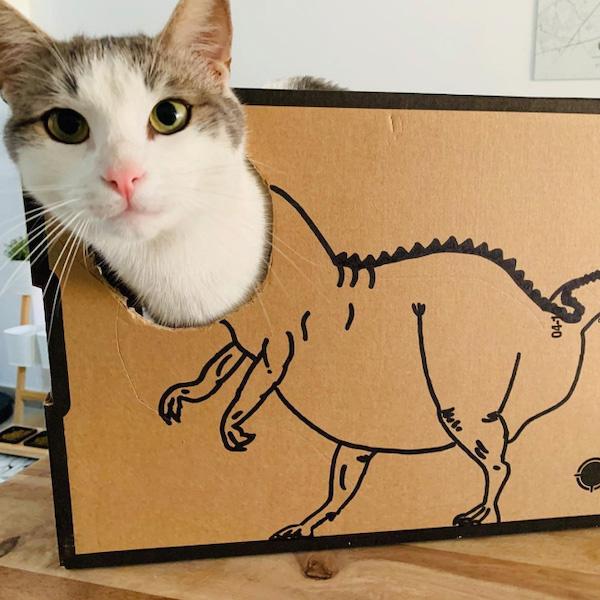 gatos dinossauros 2