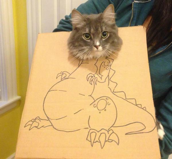 gatos dinossauros 3
