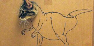 gatos dinossauros