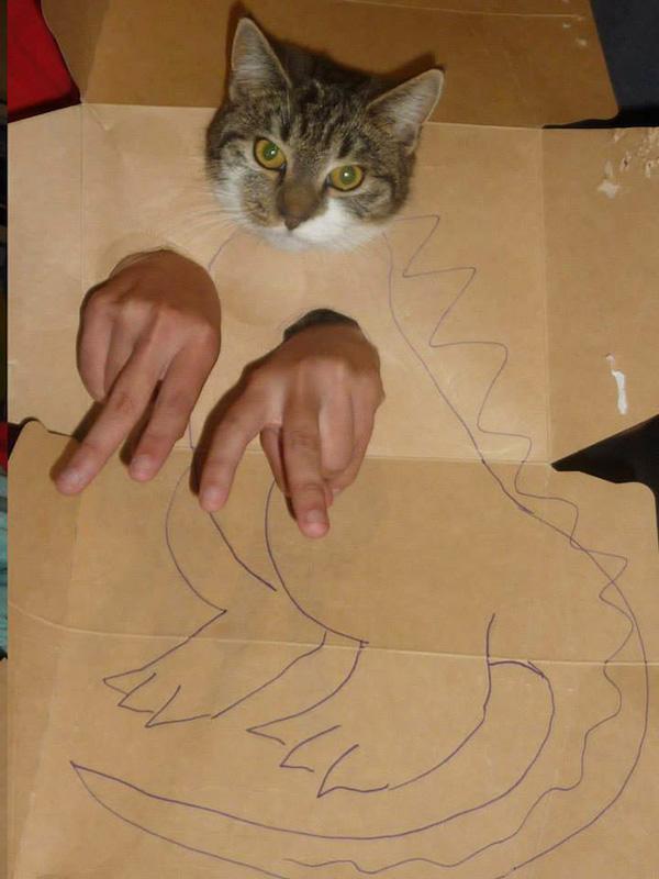 gatos dinossauros 5