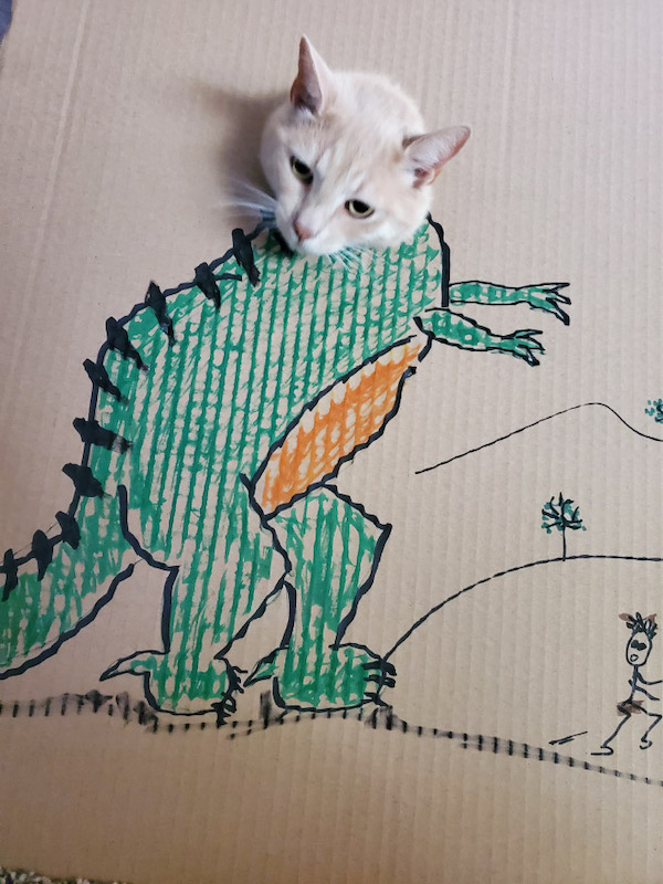 gatos dinossauros 8