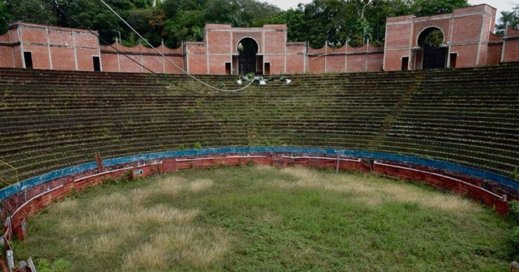 Na Colômbia, antiga praça de touradas se tornará centro ambiental e ajudará no reflorestamento de cidade 1