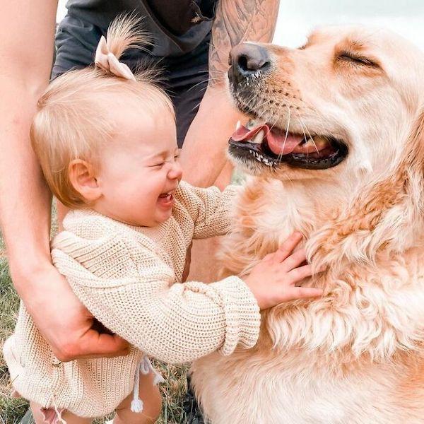 amizade golden e bebe 1