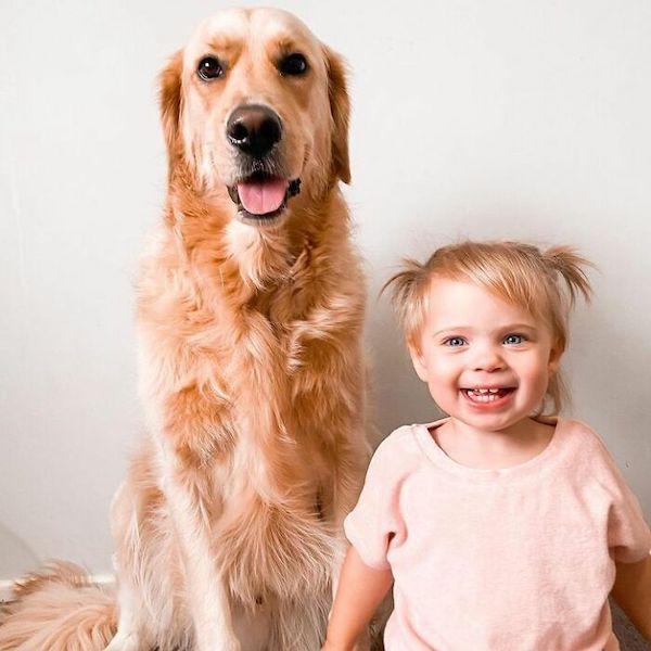 amizade golden e bebe 11