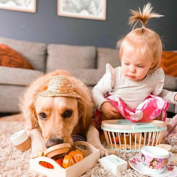 amizade golden e bebe 13