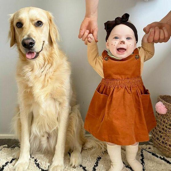 amizade golden e bebe 17