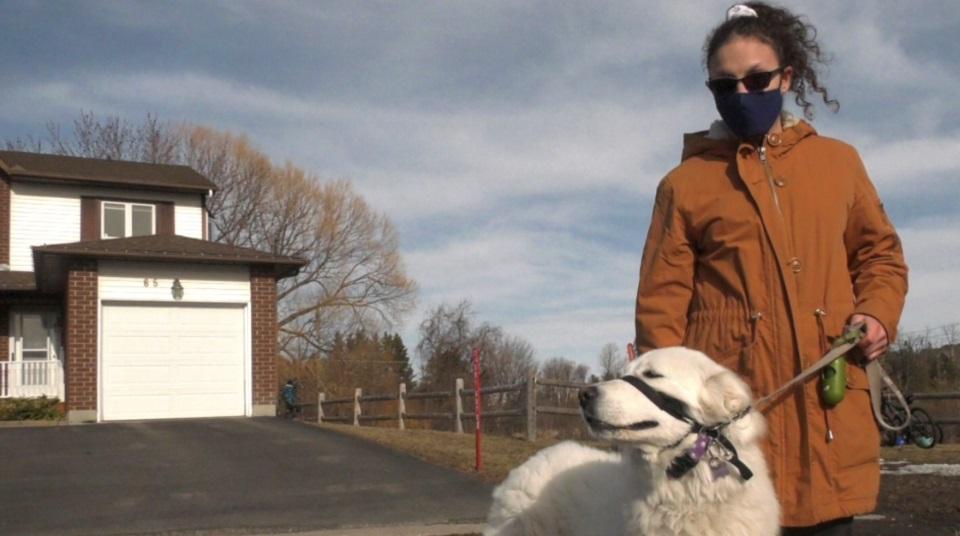 cachorra salva dona; na foto, mulher leva cachorra em coleira