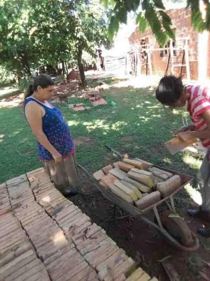 mulheres enchem carrinho mão tijolos construção casa