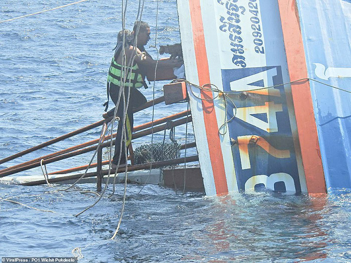 marinheiro retira gatos barco naufrágio