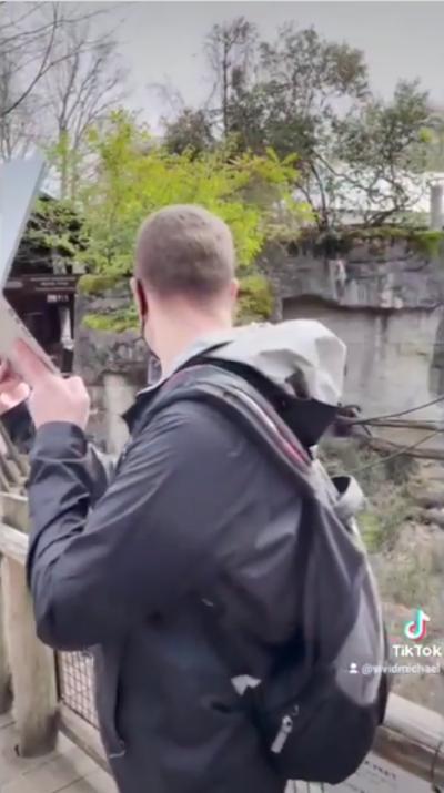professor durante passeio virtual zoológico