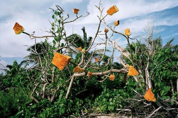 As obras de arte refletem a poluição causada pelo descarte de plástico.