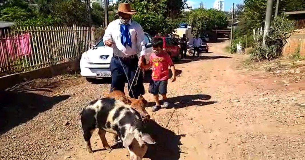 Seu Zé e neto Davi passeiam com porquinhas em rua de terra